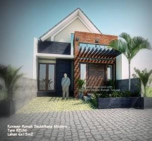 Trend Rumah Sederhana 2014